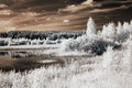 Landscape with lake infrared Royalty Free Stock Photo