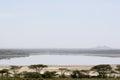 Landscape of lake ndutu shot serengeti national park Royalty Free Stock Photo