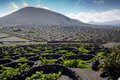 Landscape of lanzarote volcanic canary islands Royalty Free Stock Photo