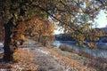 Landscape Late Autumn