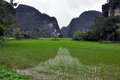 Landscape with limestone towers and rice fields ninh binh vietnam Royalty Free Stock Images