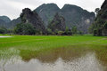 Landscape with limestone towers and rice fields ninh binh vietnam Stock Images