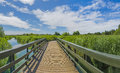 Landscape of london wetlands center nature reserve wwt Stock Photography