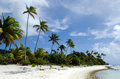 Landscape of of maina island in aitutaki lagoon cook islands beautiful beach on Royalty Free Stock Photo