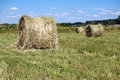 Landscape with many hay rolls on cultivate field countryside in hot summer day Stock Photo