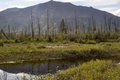 Landscape marshy floodplain of the river mountain suntar far corners earth in yakutia ridge suntar khayata russia Stock Image