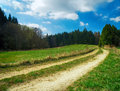 Landscape with meadows and trees hdr blue sky Royalty Free Stock Images