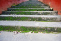 Landscape of mossy stone stairs Royalty Free Stock Photo