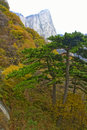 Landscape of Mount Hua Stock Photo