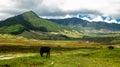 Landscape Of Mountain Phobjikh...