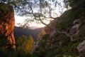 Landscape Of Nature Reserve
