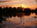 The landscape of the northern nature forest sunset over the ri river nadym Stock Image