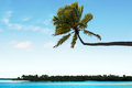 Landscape of one foot island in aitutaki lagoon cook islands view Royalty Free Stock Image