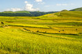 Landscape of Piano di Castelluccio Royalty Free Stock Photography