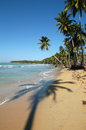 Landscape of playa bonita at las galeras on dominican republic Royalty Free Stock Photography