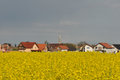 Landscape with rape field and village Royalty Free Stock Photo
