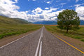 Landscape road steppe mountains the altai with a at the horizon cloudy blue sky trees and that goes straight to the Stock Images