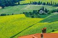 Landscape in Romagna at summer Stock Images