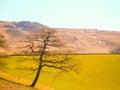 Landscape scene from trespass walk Royalty Free Stock Photo