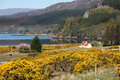 Landscape of scottish highlands in the western part of scotland uk Royalty Free Stock Photo
