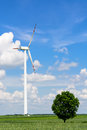 Landscape with single wind turbine Royalty Free Stock Photo