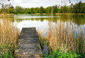 Landscape spring at the pond photo of reeds and wooden bridge in raszyn ponds reserve in early in april horizontal view Royalty Free Stock Image