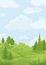 Landscape summer green forest blue sky vector illustration Stock Image