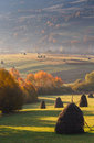 Landscape In the sunlight haystacks on autumn mountain meadow. Royalty Free Stock Photo