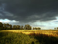 Landscape thunderclouds over the field and trees on a summer day Royalty Free Stock Photo