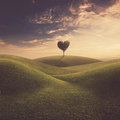 Landscape with tree heart Royalty Free Stock Photo