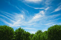 Landscape with trees and clouds bright green blue sky on spring Royalty Free Stock Image