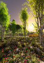 Landscape between the trees a pastoral natural surrounds and ground cover with plants and flowers in sunset Stock Photo