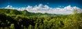Landscape Trees Sky Summer For...