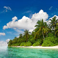 Landscape of tropical island beach with palm trees and cloudy blue sky Royalty Free Stock Photo