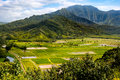 Landscape view of Hanalei valley and green taro fields, Kauai Royalty Free Stock Photo