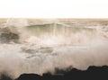 Landscape view on the Oregon coast