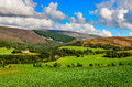 Landscape view of scottish highlands meadows scenic near cairngnorms np united kingdom Stock Photo