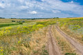 Landscape of wild ukrainian prairie summer Stock Photography