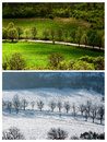 Landscape winter summer Stock Images