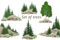 Landscapes with Trees and Rocks Royalty Free Stock Photo