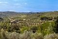 Landscapes of Tuscany in Radda Chianti Royalty Free Stock Photo