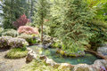 Landscaping idea beautiful man made pond with stones flourishing bushes fir trees Stock Image