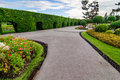 Landscaping trimmed trees in public park Royalty Free Stock Photo