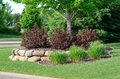 Landscaping with Weigela Shrubs and Rock Retaining Wall Royalty Free Stock Photo