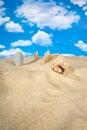 Landschap met zeeschelp en stenen op hemel Stock Afbeelding