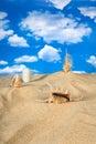 Landschap met zeeschelp en stenen op hemel Stock Foto