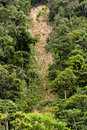 Landslide and erosion in jungle Royalty Free Stock Image