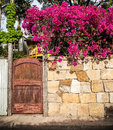 Lane gate with sandstone wall and bright fuchsia bougainvillea f rust color painted pink flowers a Royalty Free Stock Photo
