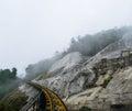 Lane railway runs skyward on forest Royalty Free Stock Photos