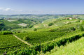 Langhe hilly wine region in piedmont italy le Royalty Free Stock Photo